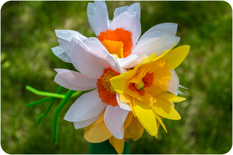 Mothers Day Flowers Diy Daffodil Bouquet Tissue Paper